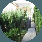 Pass-Zen Services - Aménagement espaces verts et détente en entreprise