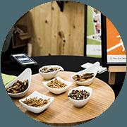 Pass-Zen Services - Bar à insectes en entreprise