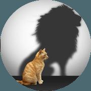 Pass-Zen Services - Formation confiance en soi en entreprise