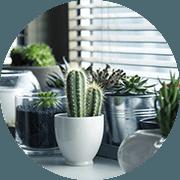 Pass-Zen Services - Team building écologique en entreprise